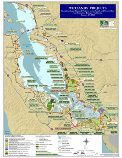 South Bay Wetlands Inventory Map