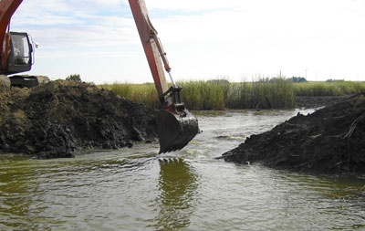 Blacklock Marsh Restoration